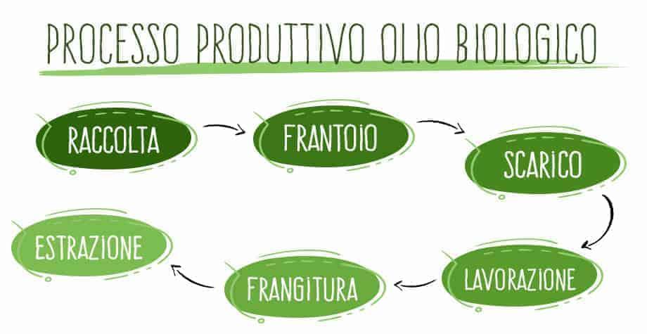processo olio biologico